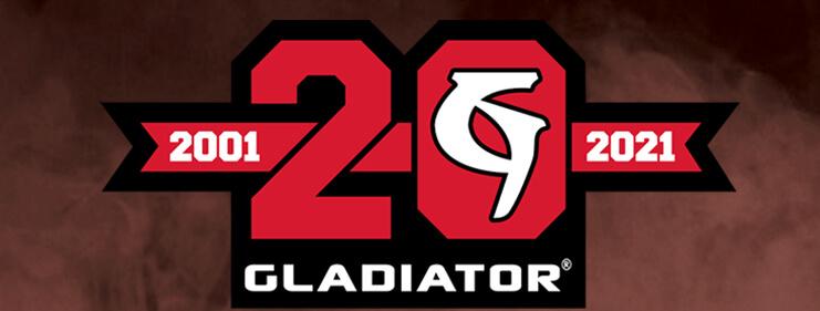 20-Year Anniversary Logo